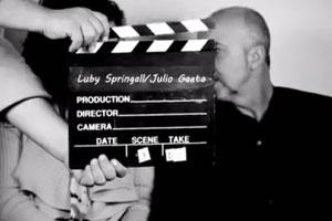 Nuevo Sur / arquitectos Luby Springall y Julio Gaeta